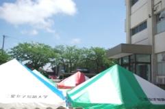 前日のテント準備写真