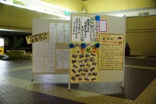 「みんなのエコ川柳コンテスト」代表作品も掲示(写真)