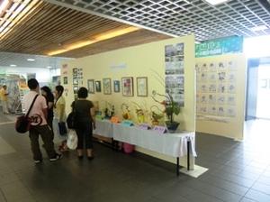 仁愛女子短期大学華道サークルによる作品展示