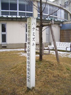 開学40周年記念樹「ハナミズキ」の写真