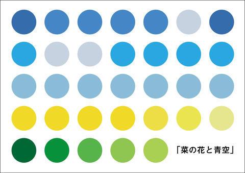 1911014嶋田陽菜.jpg