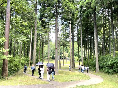 金津創作の森美術館に行ってきました!